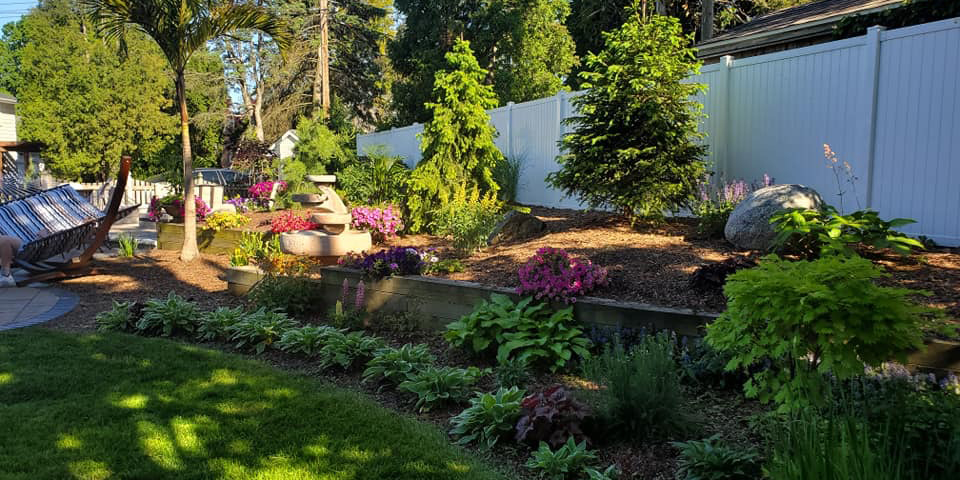 Landscaping in back yard