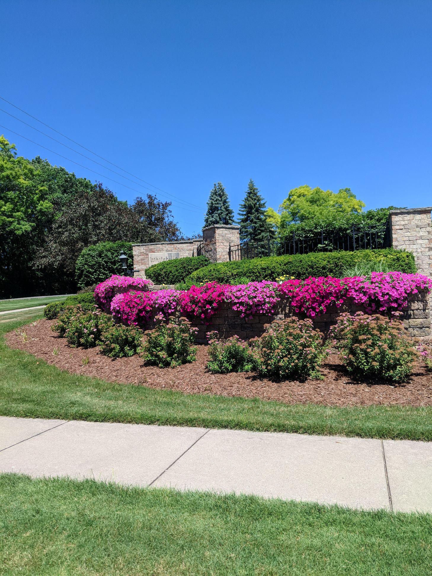 Pink and purple flowers at gate Land Visions Lansing Michigan 2