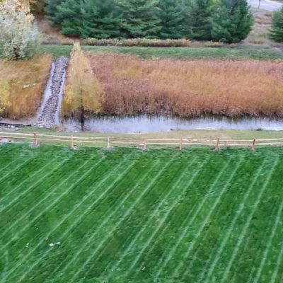 perfectly mowed lawn Land Visions Lansing Michigan