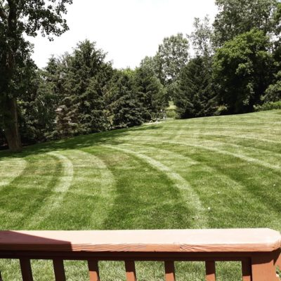 residential mowed lawn Land Visions Lansing Michigan