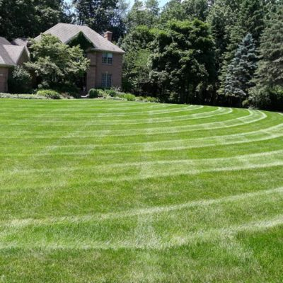 residential lawn perfectly mowed Land Visions Lansing Michigan