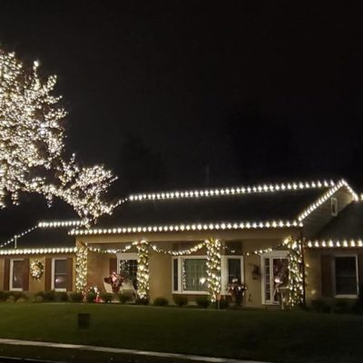 christmas lights on tree and house Land Visions Lansing Michigan