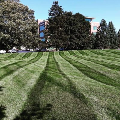 commercial lawn mowed Land Visions Lansing Michigan