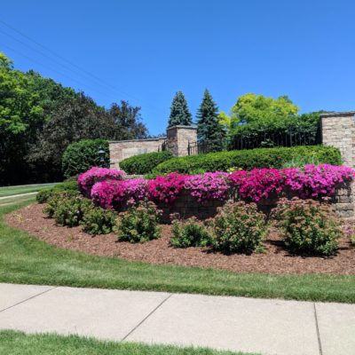 Pink and purple flowers at gate Land Visions Lansing Michigan